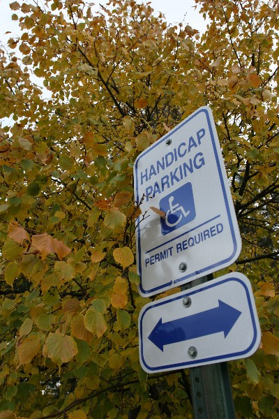 Handicap Sign in Trees